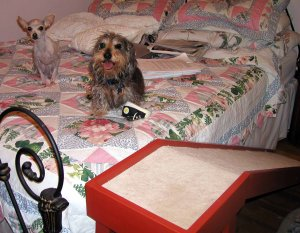 Dachshund Ramp for a Bed