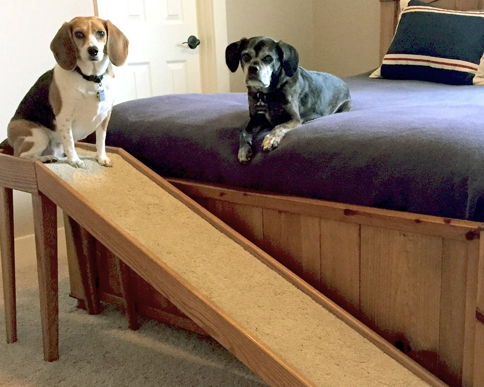 Bed Ramps For Pets