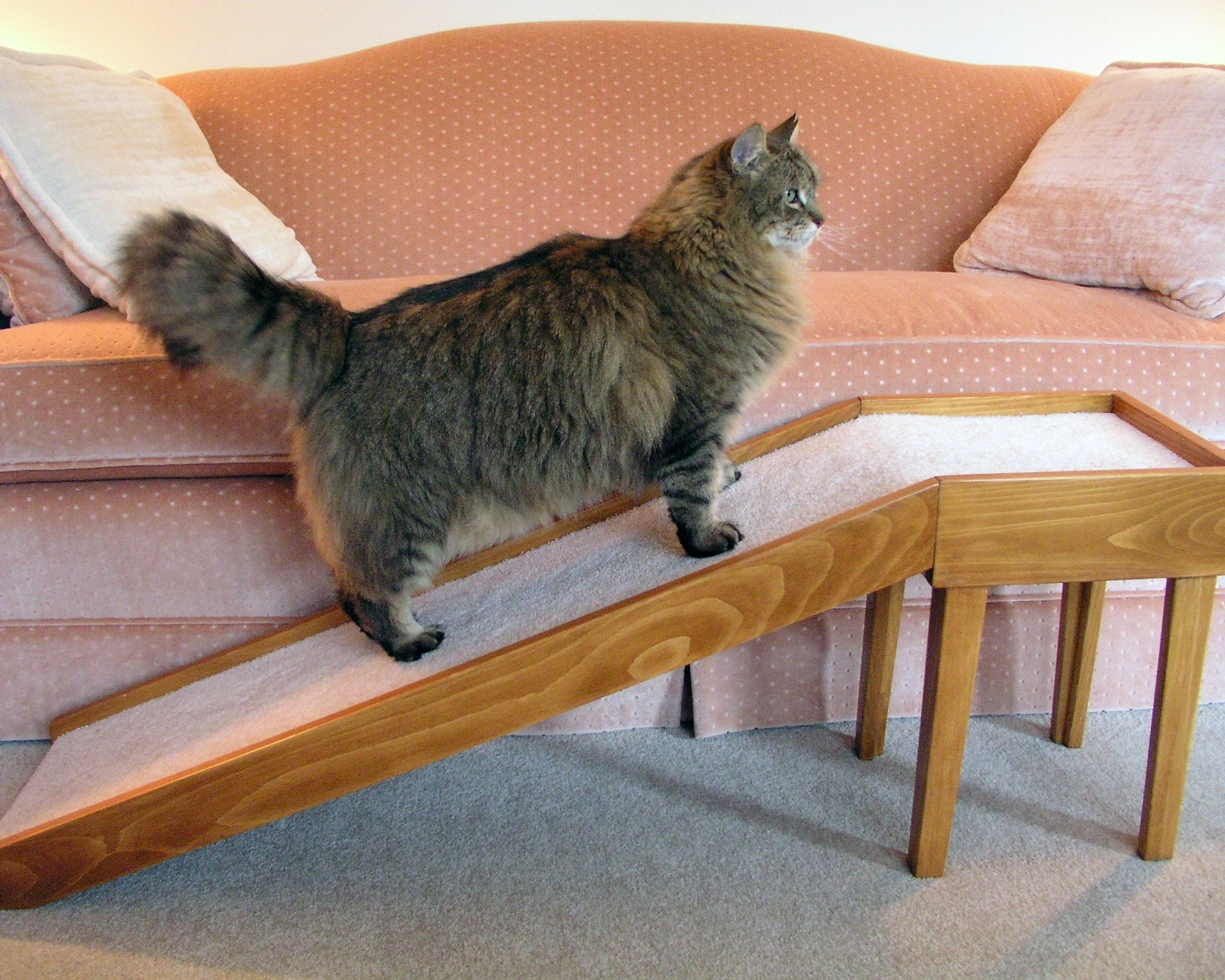 Sofa Ramps For Pets