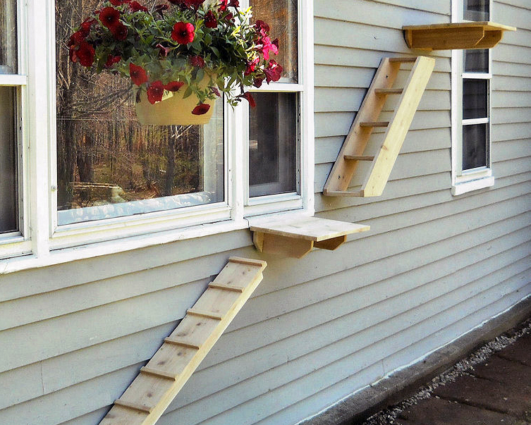 Outdoor Cat Stairs and Climbers