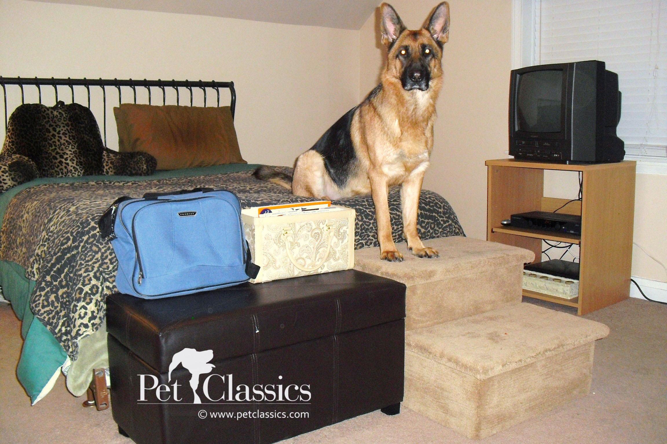 Large Dog Steps Goldenacresdogs