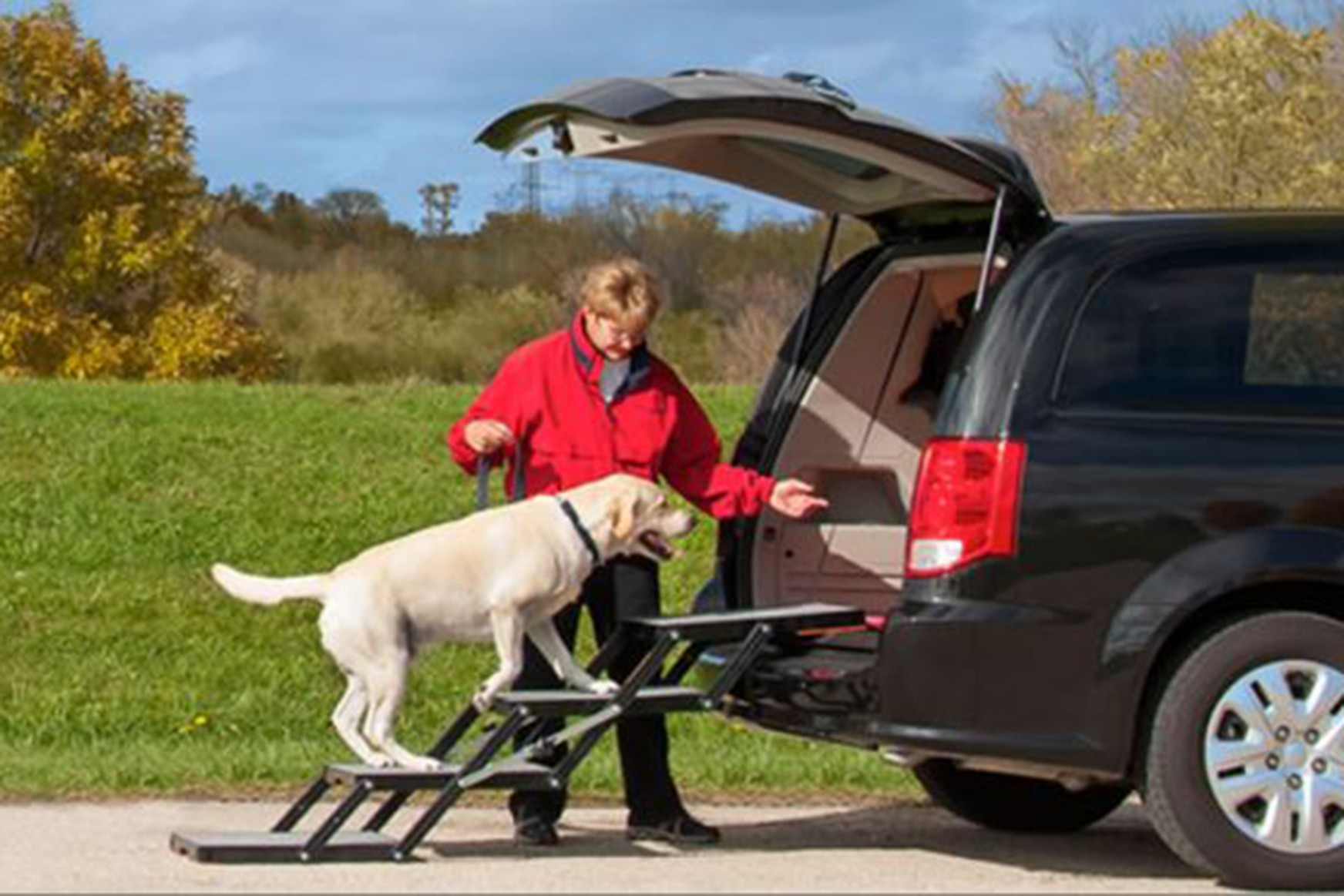 Dog Ramp For Truck >> Pet Loader Folding Dog Stairs