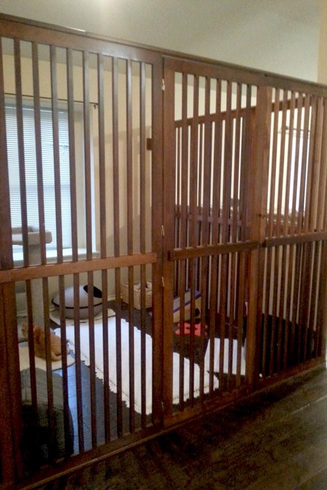Cat Gate Enclosure